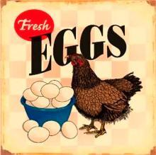 FRESH EGGS FARM SIGN -- FREE SHIPPING