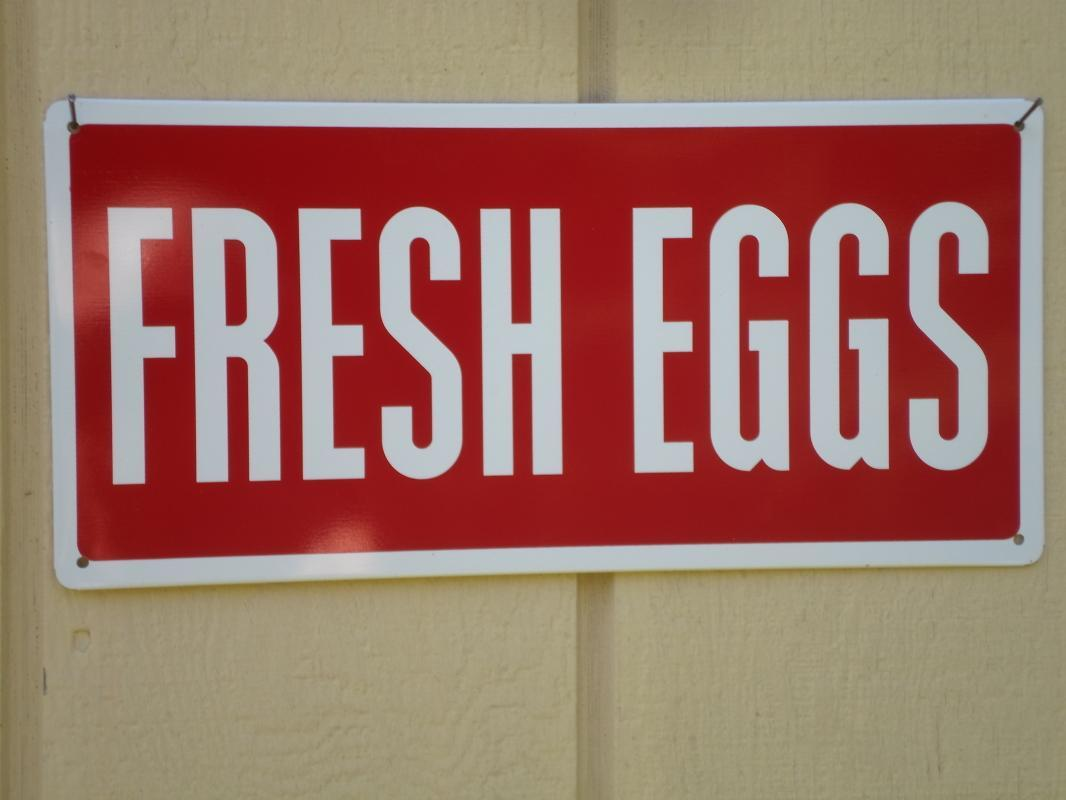 Lot of ( 3 ) Farm Country Fresh Egg Metal Signs