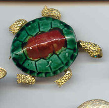 SALE Grand Turtle Pin