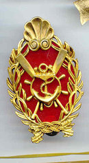 SALE Military Pin