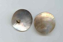 SALE Large Dazzling Shell Earrings