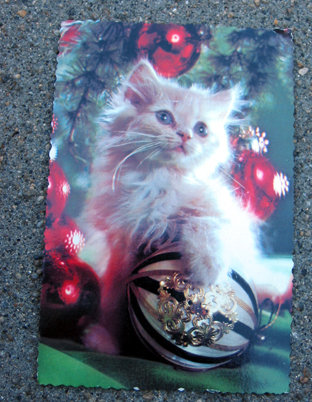 old vintage 1983 CHRISTMAS CAT postcard