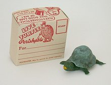 old vintage baby TURTLE MAILING BOX
