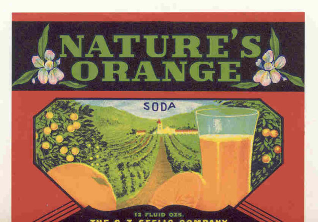 old vintage NATURE'S ORANGE SODA LABEL ~ idaho