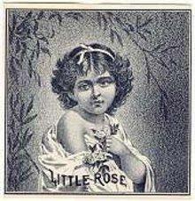 old vintage LITTLE ROSE OUTER CIGAR LABEL 1900