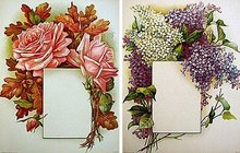 Victorian Flower Prints - Chromolithograph