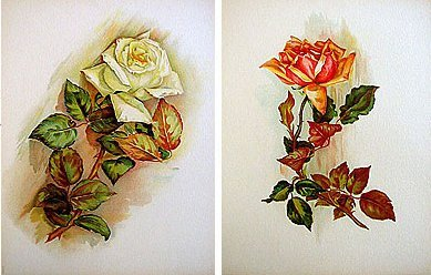 2 old vintage VICTORIAN LITH FLOWER PRINTS
