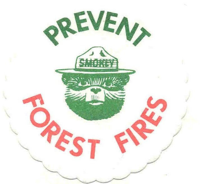 old vintage 1960s SMOKEY THE BEAR paper coaster