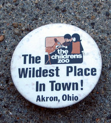 old vintage AKRON OH CHILDREN'S ZOO pinback pin