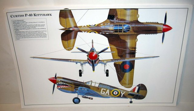 old vintage CURTISS P-40 KITTYHAWK plane poster