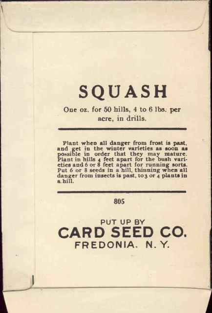 old vintage 1930s SQUASH SEED PACKET ~ FREDONIA NY