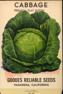 old vintage 1920s FLAT CABBAGE SEED PACKET ~ PASADENA CA