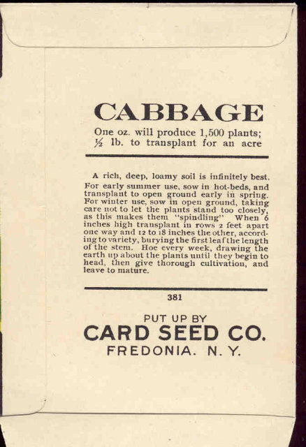 old vintage 1930s CABBAGE SEED PACKET ~ FREDONIA NY