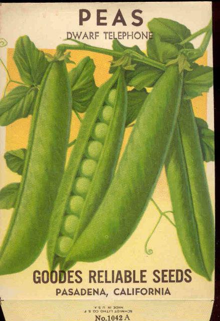 old vintage 1930s GREEN PEAS SEED PACKET ~ PASADENA CA