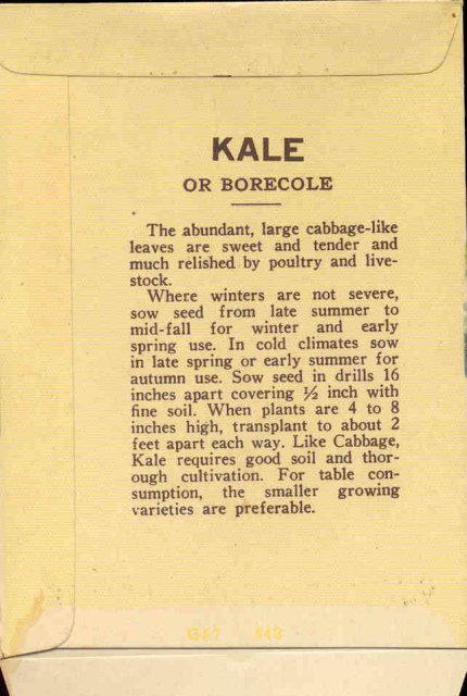old vintage 1930s KALE SEED PACKET ~ PASADENA CA