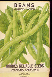 old vintage 1930s GREEN BEANS SEED PACKET ~ PASADENA CA