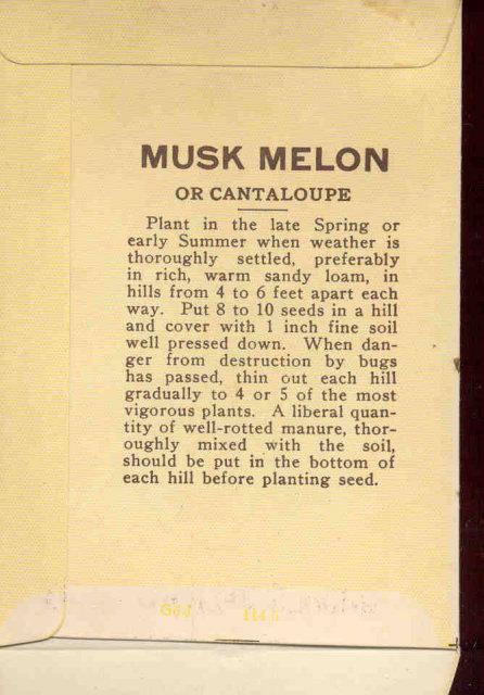 old vintage 1930s CANTALOPUE MUSK MELON SEED PACKET ~ PASADENA CA