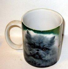 Mad Cat Mug