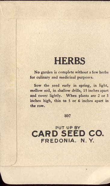 old vintage 1930s SAVORY HERB SEED PACKET ~ FREDONIA NY