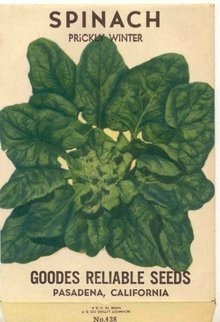 old vintage 1930s PRICKLY WINTER SPINACH SEED PACK ~ PASADENA CALIFORNIA