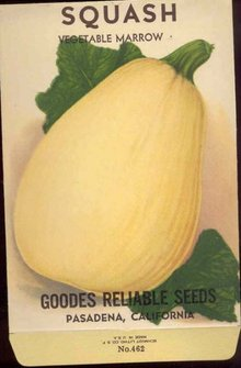 old vintage 1930s YELLOW SQUASH SEED PACK ~ PASADENA CALIFORNIA