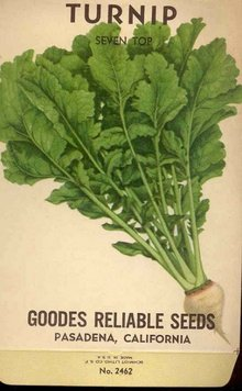 old vintage 1930s TURNIP SEED PACK ~ pasadena California