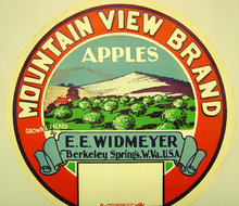 old vintage 1920 MT. VIEW APPLES CRATE LABEL