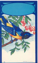 old vintage 1920s BLUE BIRD BROOM LABEL