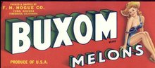 old vintage 1940s BUXOM MELONS Produce Crate Label