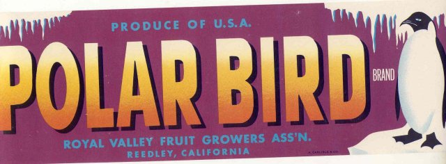 old vintage 1940s POLAR BIRD PENGUIN CRATE LABEL