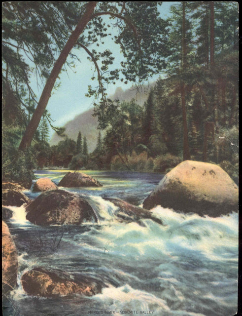 old vintage 1950s RUNNING STREAM litho print
