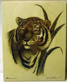 June Weltman Tiger Engraving 1978