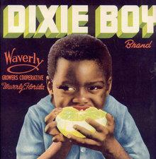 Dixie Boy Grapefruit Citrus crate Label