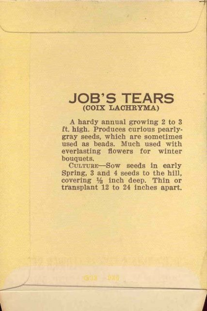 VINTAGE FLOWER PACK ~ JOB'S TEARS FLORAL ~ PASADENA CALIFORNIA 1920S