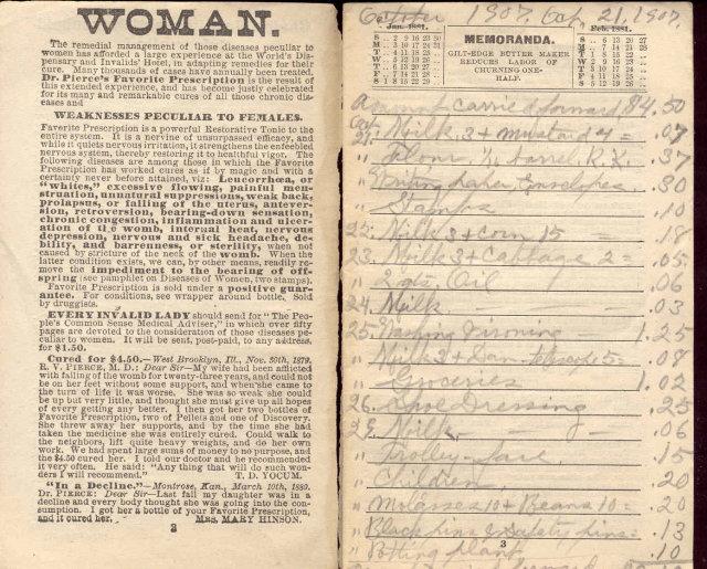 VINTAGE 1881 LADIES CALENDAR NOTEBOOK ~ MEDICAL ASSOC BUFFALO NEW YORK