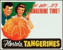 FLORIDA TANGERINE ORANGE STORE DISPLAY SIGN