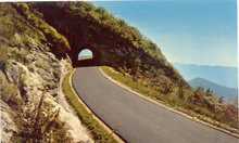 BLUE RIDGE PARKWAY / NORTH CAROLINA / POSTCARD