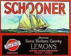 18 VINTAGE CITRUS SHIP SCHOONER CRATE LABELS