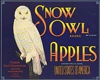 Snow White Owl Apple Crate label