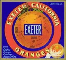 Exeter Sunkist Orange Citrus Crate label