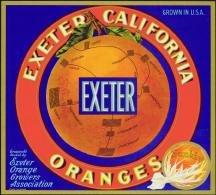 Exeter Sunkist Orange Citrus Crate label