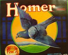 Sunkist Homer Pigeon Label