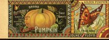ANTIQUE OLNEY & FLOYD BUTTERFLY PUMPKIN LABEL