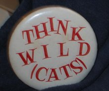 VINTAGETHINK WILDCATS PINBACK PIN