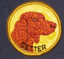 Irish Setter Dog Patch