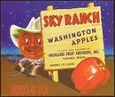 VINTAGE SKY RANCH APPLE CRATE LABEL / COWBOY / COMICAL