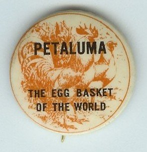 ANTIQUE 1920s PETALUMA EGG ROOSTER PINBACK PIN