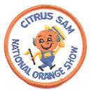 3 VINTAGE FRUIT CITRUS PATCHES 1960S FESTIVAL /