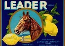 Leader Lemon Citrus Crate Label