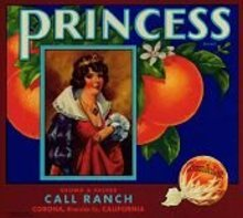 VINTAGE 1939 PRINCESS SUNKIST ORANGE CRATE LABEL / citrus fruit